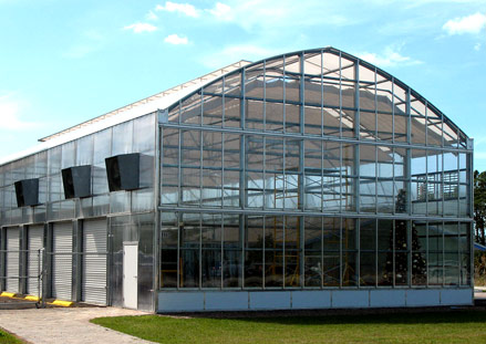 Capitol Crown Greenhouse