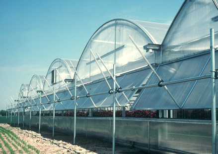 Statesman Greenhouse