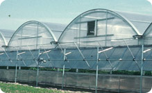 StatesMan™ Greenhouse